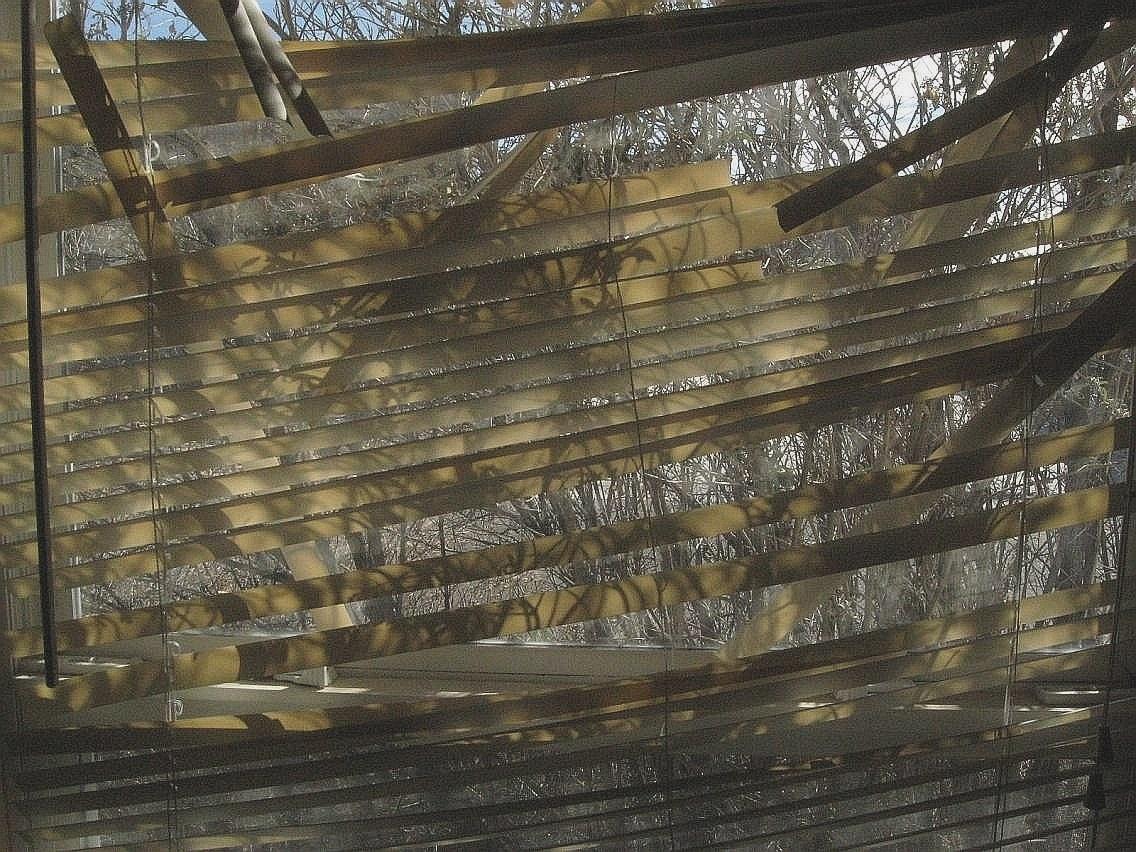 catclimbingstructures_destroyed_blinds