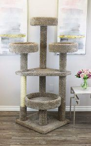 cat_climbing_structures_best_cat_tree_for_large_cats_6_prestige_neutral_maine_coon_cat_tower