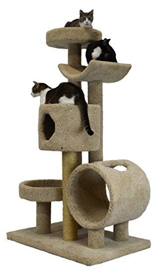 cat_climbing_structures_best_cat_tree_for_large_cats_2