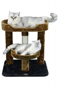 best_cat_trees_for_older_cats_go_pet_club_23_inch_cat_tree
