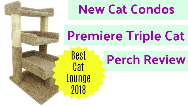 The New Cat Condos Premier Triple Cat Perch [Review]
