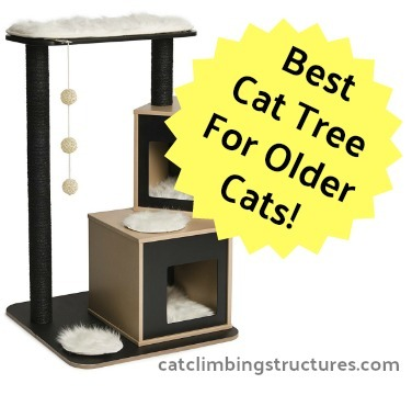 cat_climbing_structures_best_cat_trees_for_older_cats_