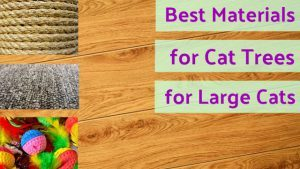 cat_climbing_structures_best_materials_for_cat_tree_for_large_cats