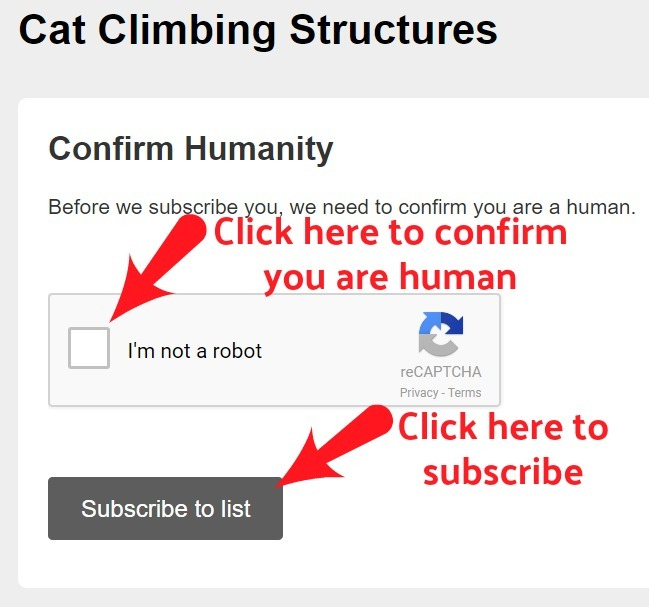 cat_climbing_structures_email_confirmation_3_