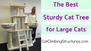 cat_climbing_structures_the_best_sturdy_cat_tree_for_large_cats_cat_tree_king_tiger_cat_tree_for