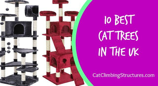 10 Best Cat Trees In The UK [All Inclusive Guide]