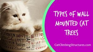 cat_climbing_structures_types_of_wall_mounted_cat_trees_tn
