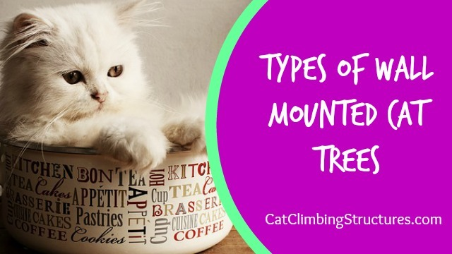 The Types of Wall Mounted Cat Trees You Need To Know Before Building