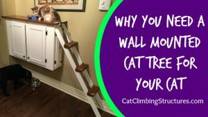 cat_climbing_structures_wall_mounted_cat_tree_icon