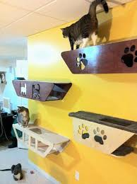 cat_climbing_structures_wall_mounted_cat_trees