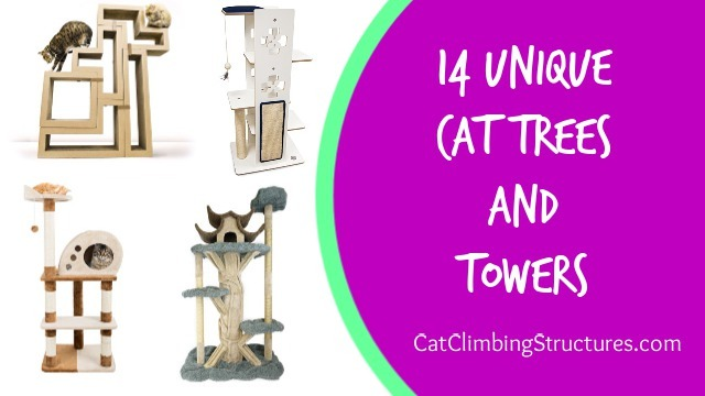 cat_climbing_structures_unique_cat_trees_and_towers_and_houses