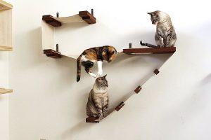 cat_climbing_structures_unique_cat_trees_and_towers_catastrophiCreations_Deluxe_cat_Playplace