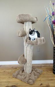 cat_climbing_structures_unique_cat_trees_and_towers_new_cat_condos_premiere_cat_play_tree