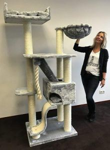 cat_climbing_structures_best_cat_condos_for_large_cats_cattreekings_mansion_grey
