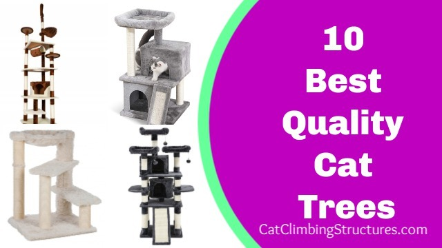 best_quality_cat_trees_2019
